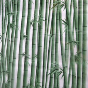 decal dán kính hình cây trúc xanh, mẫu decal in hình cây trúc giá rẻ